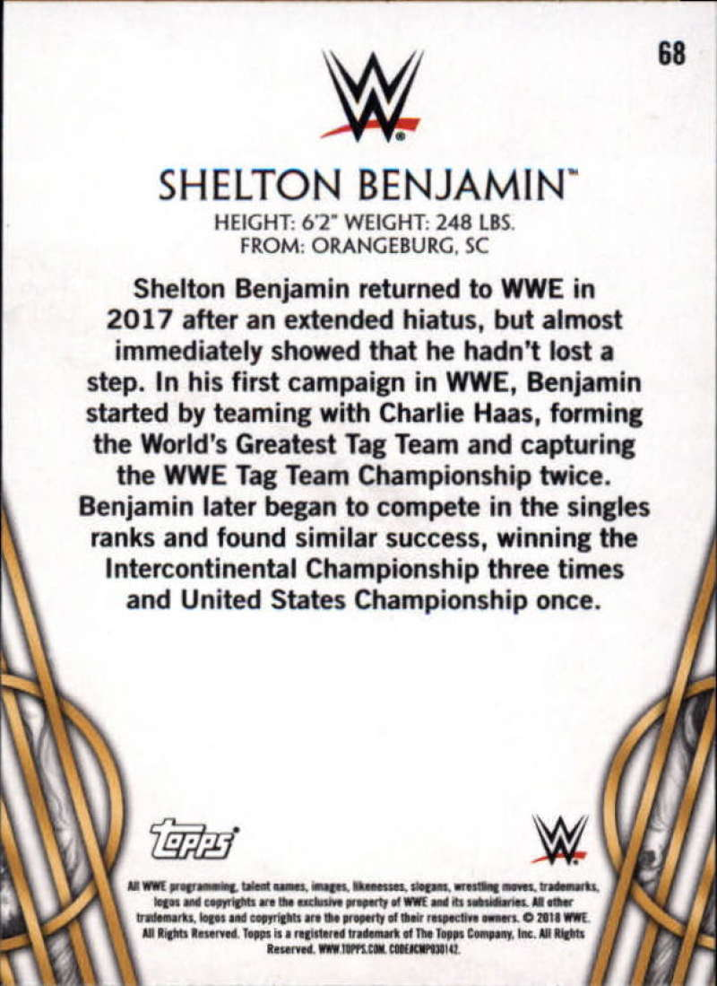 2018-Topps-Legends-of-WWE-Wrestling-Bronze-Singles-Pick-Your-Cards thumbnail 97